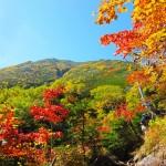 紅葉観賞なら、やっぱり登山!秋の山登りの注意点と絶景スポット